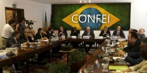 Conselho Federal de Informática do Brasil